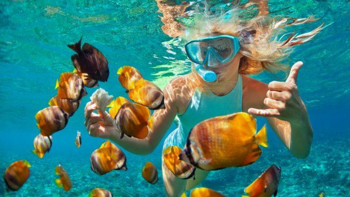 Snorkeling Staniel Cay