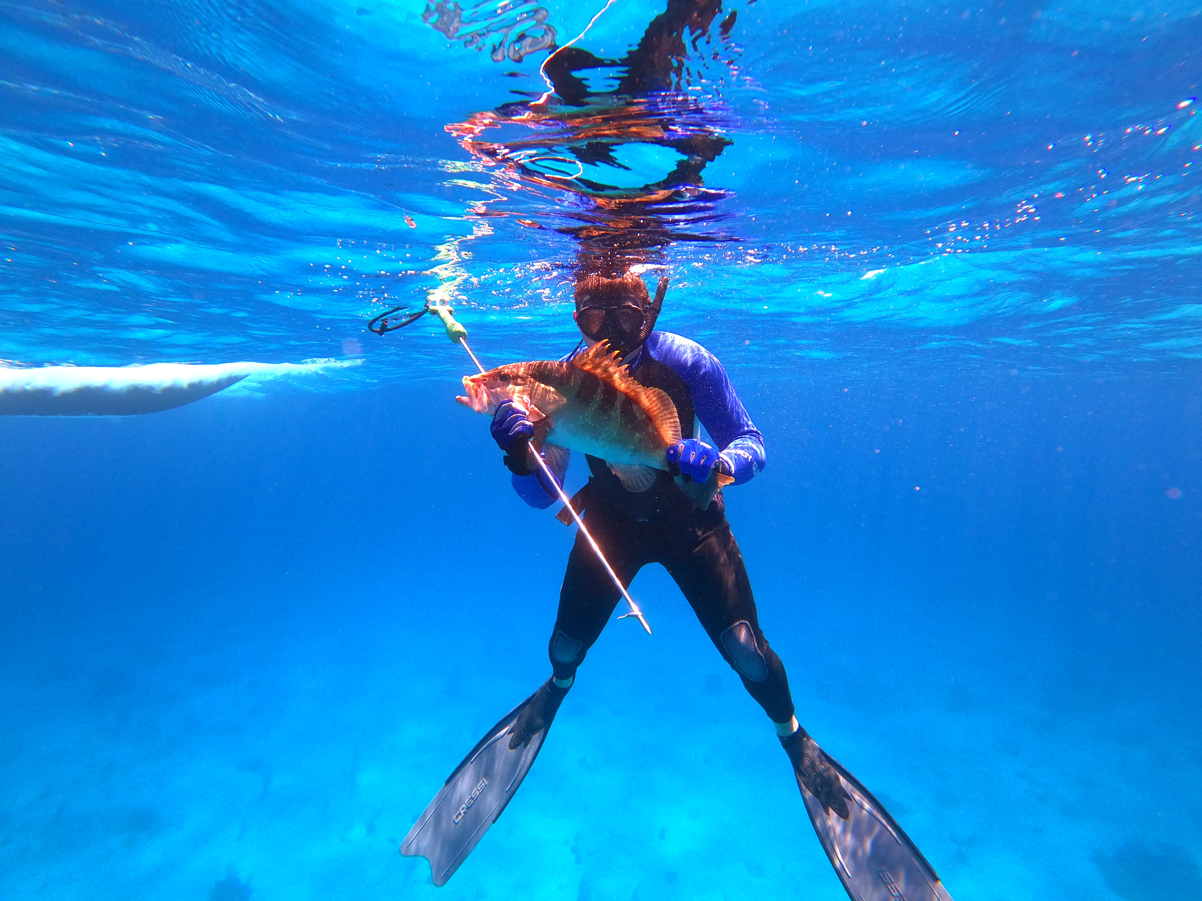 Spear fishing on Staniel Cay
