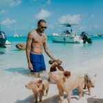 Meet the Swimming Pigs on a Day Trip From Nassau