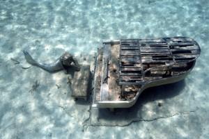 Mermaid Snorkel Staniel Cay Area