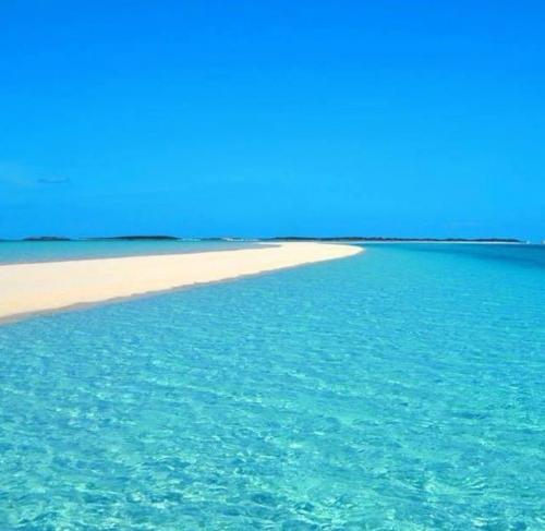 Sand Bar     Staniel Cay Bahamas Day Tour