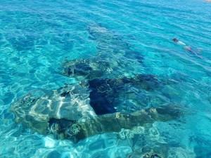 Thunderball Grotto and snorkeling